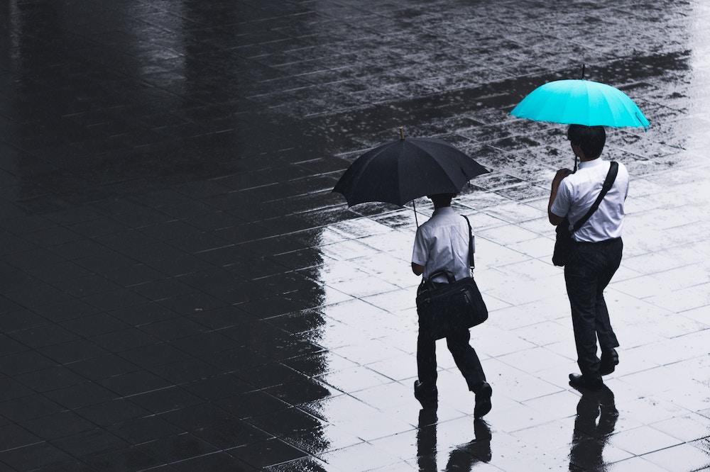 two men with umbrellas walking